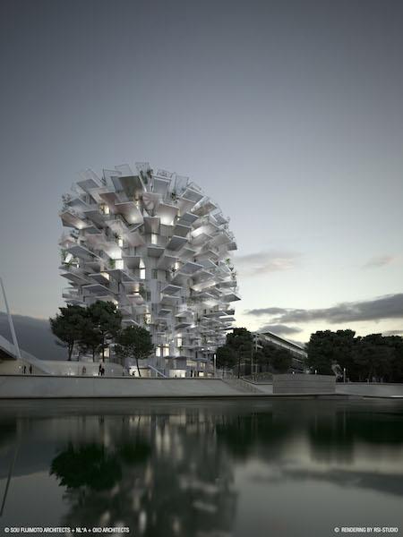 Montpellier_credit_SFA+NLA+OXO+RSI